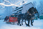 Panorama Sleigh Ride
